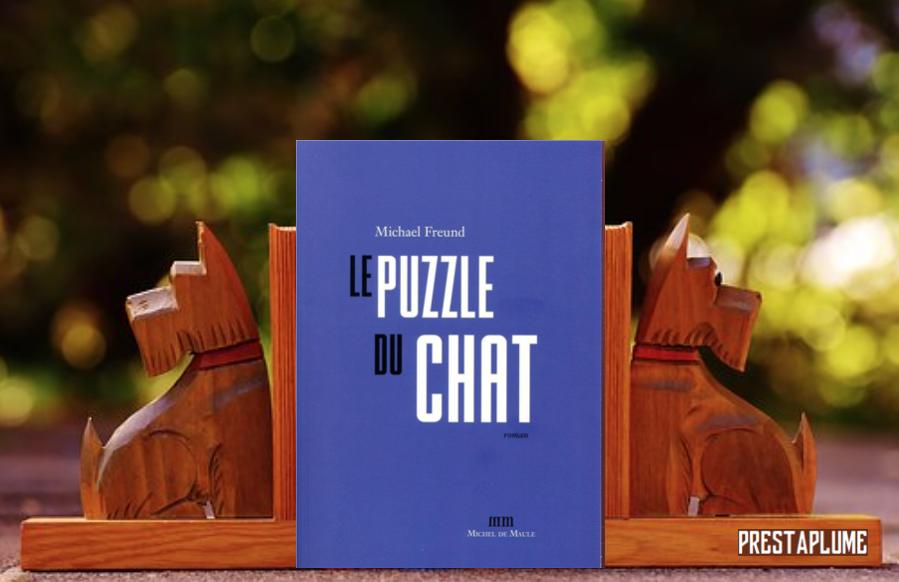 38_Le puzzle du chat